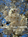 image/2011-04-09T22:14:53-1.jpg